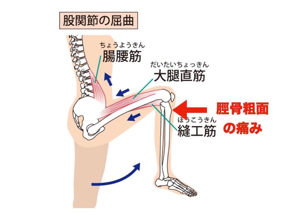 ひざ下の痛み