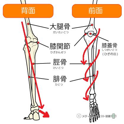 膝下の体重のかかり方