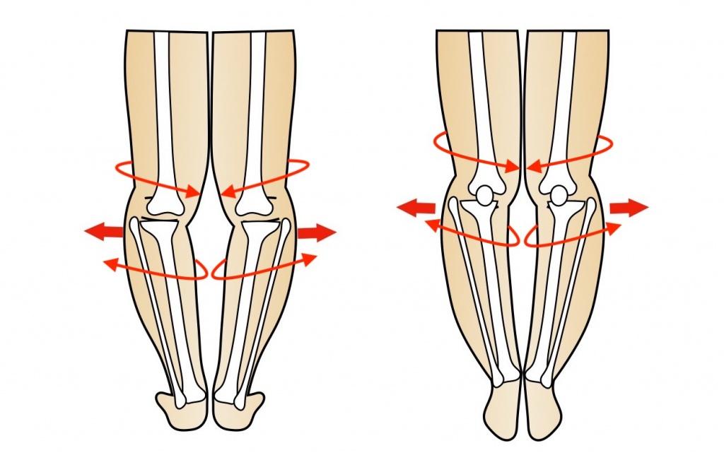 膝関節が回転する様子