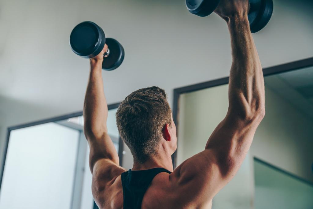 腕と背中の筋肉